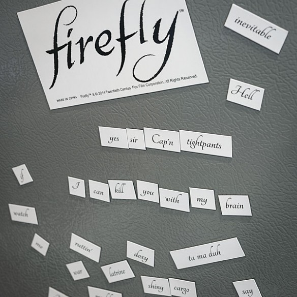 Firefly Magnetic Poetry