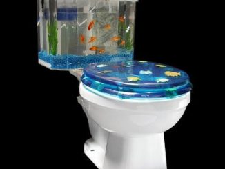 Fish 'n Flush Toilet Tank Aquarium Kit