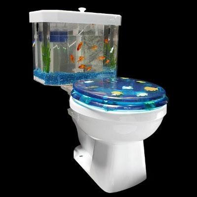 Fish 39 n flush toilet tank aquarium kit for Where to buy fish