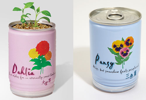 Flowers In A Can Kit