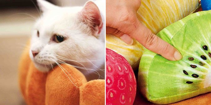 Fruit Tart Cat Beds