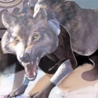 Game of Thrones A Pop-Up Guide to Westeros Direwolf