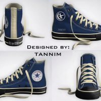 Game of Thrones House Arryn Converse Chucks