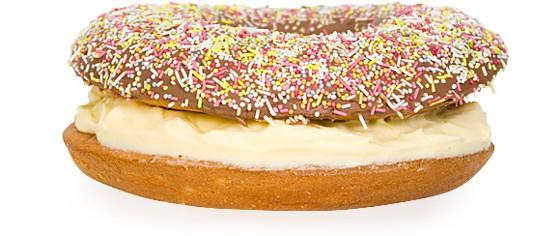 Giant Doughnut Mould