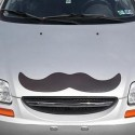 Giant Magnetic Mustache3