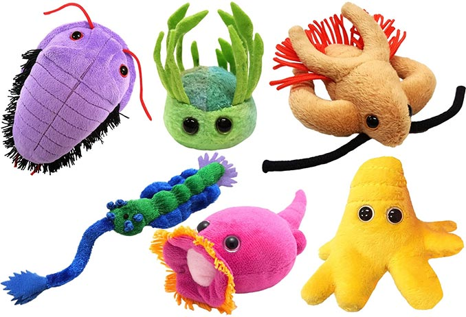 Giant Microbes Plush Gift Box Sets