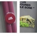 Gourmet Edible Tasty Bones
