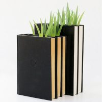 Grass Blade Bookmark