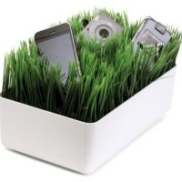 Grassy Lawn Charging Station