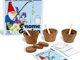 Grow Your Own Gnome Garden Kit