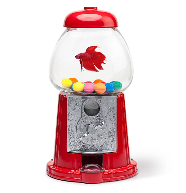 Gumball machine fishbowl for Gumball fish tank