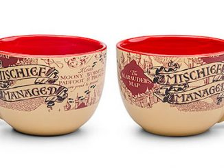 Harry Potter Mischief Managed Ceramic Soup Mugs