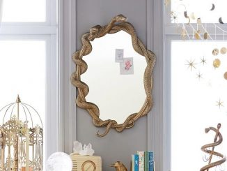 Harry Potter Nagini Snake Mirror