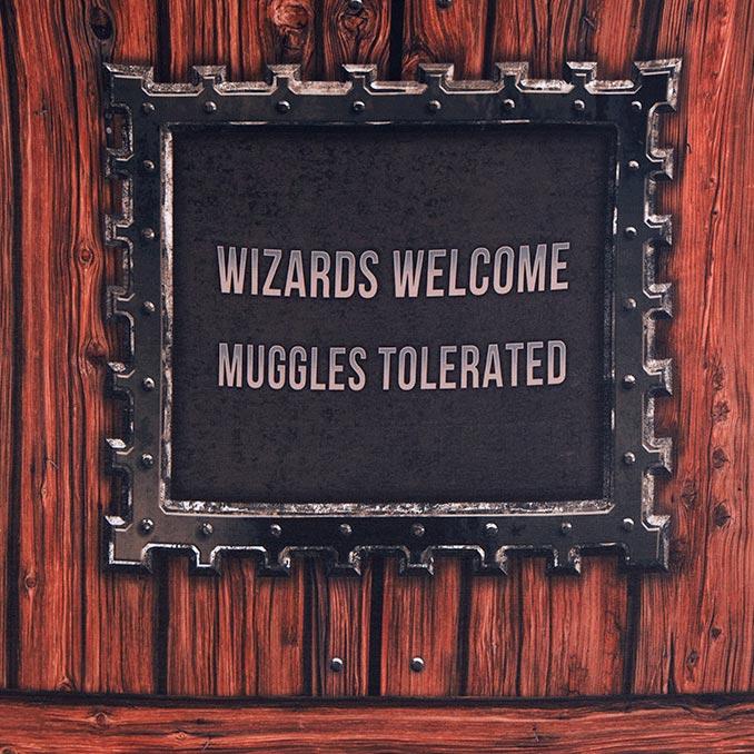Harry Potter No Muggles Door Cover
