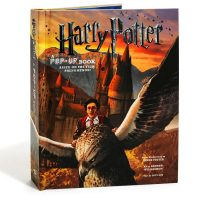 Harry Potter Pop-Up Book Cover