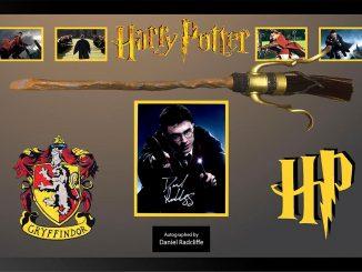 Harry Potter Signed Quidditch Broom