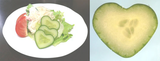 Heart Shaped Cucumber Mold Set