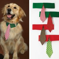 Holiday Hound - Dog Tie