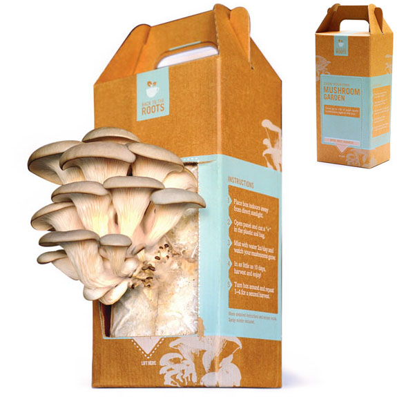 Home Mushroom Growing Kit