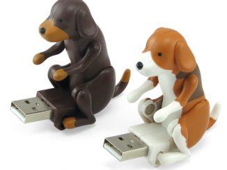 Humping USB Dog