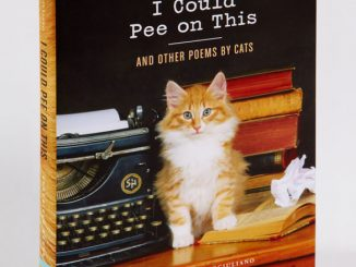 I Could Pee On This And Other Poems By Cats