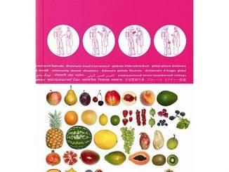 ICOON Visual Dictionary