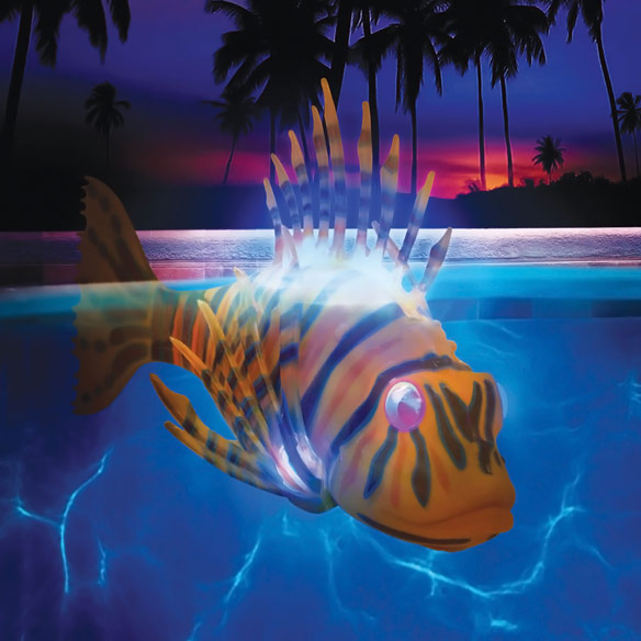 Illuminated Fish Bot