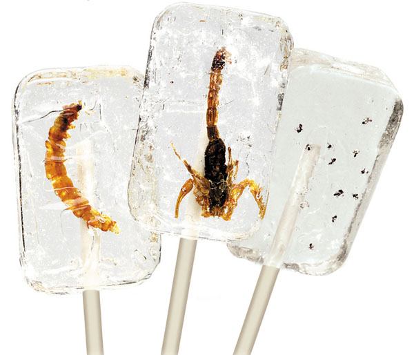 Insectilix Lolly