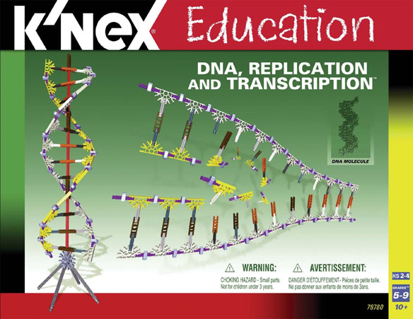 KNex DNA Replication Set