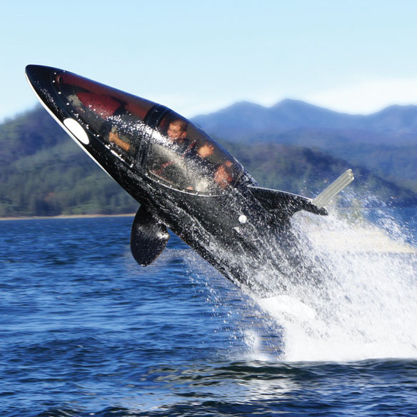 Killer Whale Designed Submarine