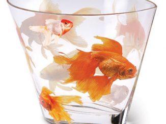 Koi Glass Vase