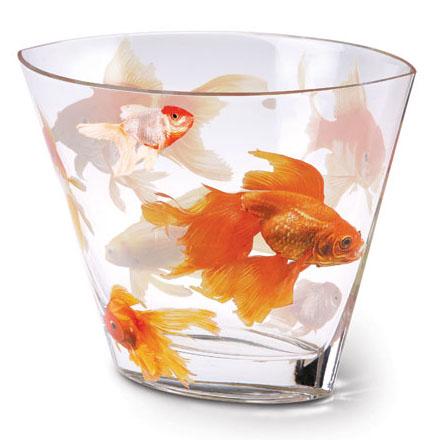 Koi glass vase for Koi 5 anopcharik patra
