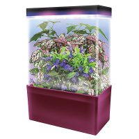 LED Lightcubes Terrarium