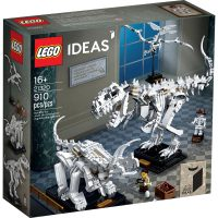 LEGO IDEAS Dinosaur Fossils 21320 Box