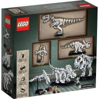 LEGO IDEAS Dinosaur Fossils 21320 Box Back