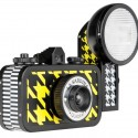La Sardina Pattern Editions Cameras