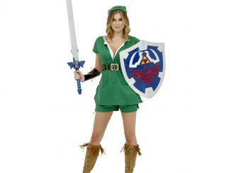 Sexy Legend of Zelda Link Costume