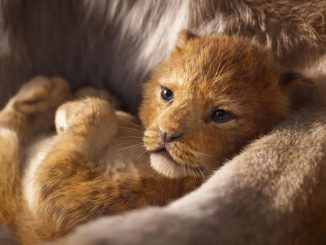 Lion King Long Live the King Trailer