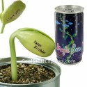 Magic Bean In A Can Message Plant