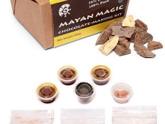 Mayan Magic Chocolate Making Kit