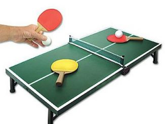Mini Ping Pong Game