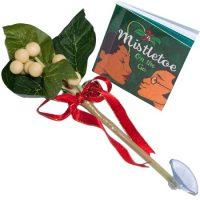 Mistletoe-To-Go