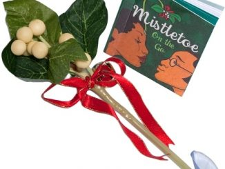 Mistletoe-To-Go
