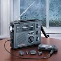 Observer Solar Radio