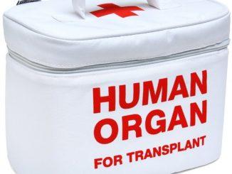 Organ Transport Lunch Bag
