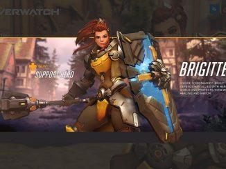 Overwatch Hero Brigitte