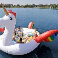 Party Bird Unicorn Island Float