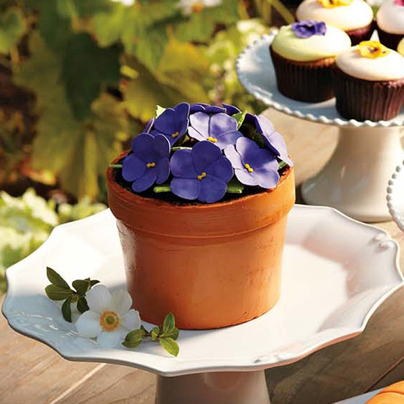 Perfect Endings Blooming Flower Pot Cake