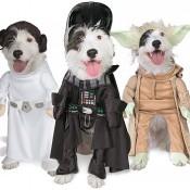 Pet Star Wars Costumes