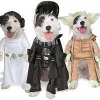 Pet Star Wars Costumes